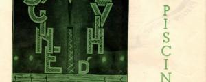 affiche pour l'ouverture de la piscine du Palais du Travail, 1933 (cote 4R20)