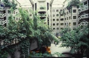 Cour intérieure des bâtiments du SEPTEN, 1985 (ph. OVIDE)