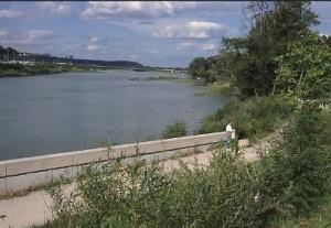 Rive du Rhône au parc de La Feyssine en 1998 (Ph. G. Michallet)