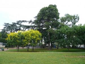 Vue du parc Vaillant-Couturier depuis le sud (ph. S. Majdar)
