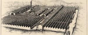 Représentation de l'usine Dognin tirée du fascicule